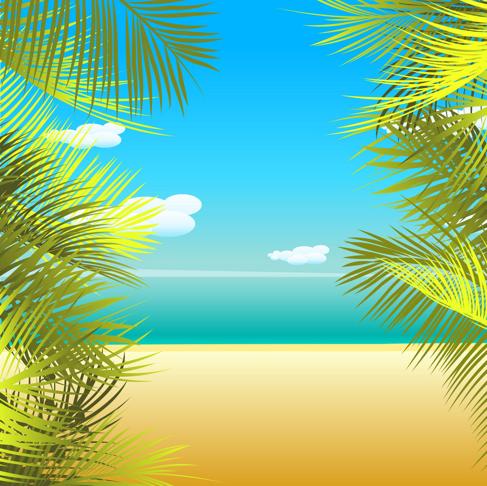 Vector Summmer Background With Palm Leaves