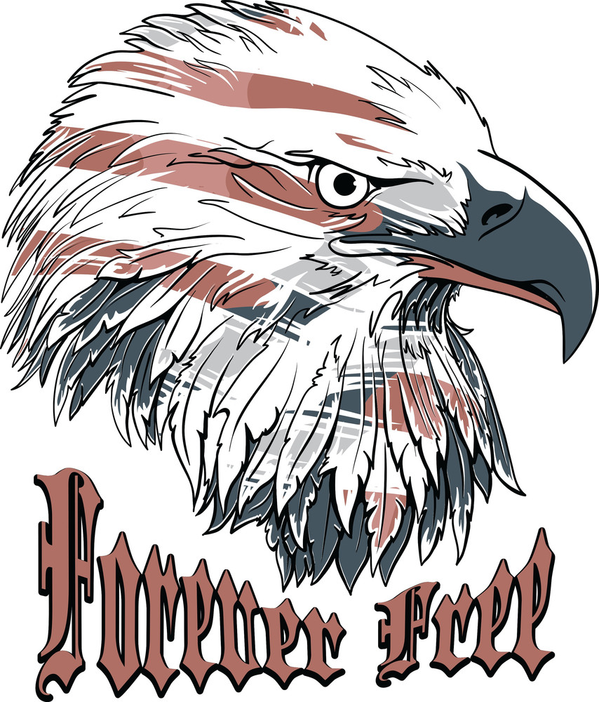 Vector T Shirt Design With Eagle Royalty Free Stock Image