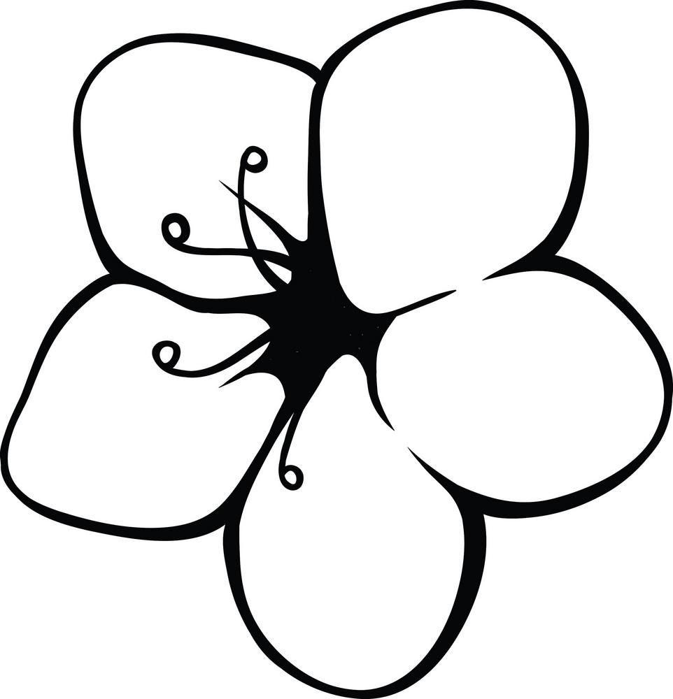 Vector Tropical Flower