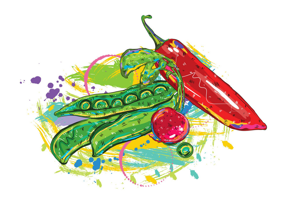 Vector Vegetables With Colorful Splashes