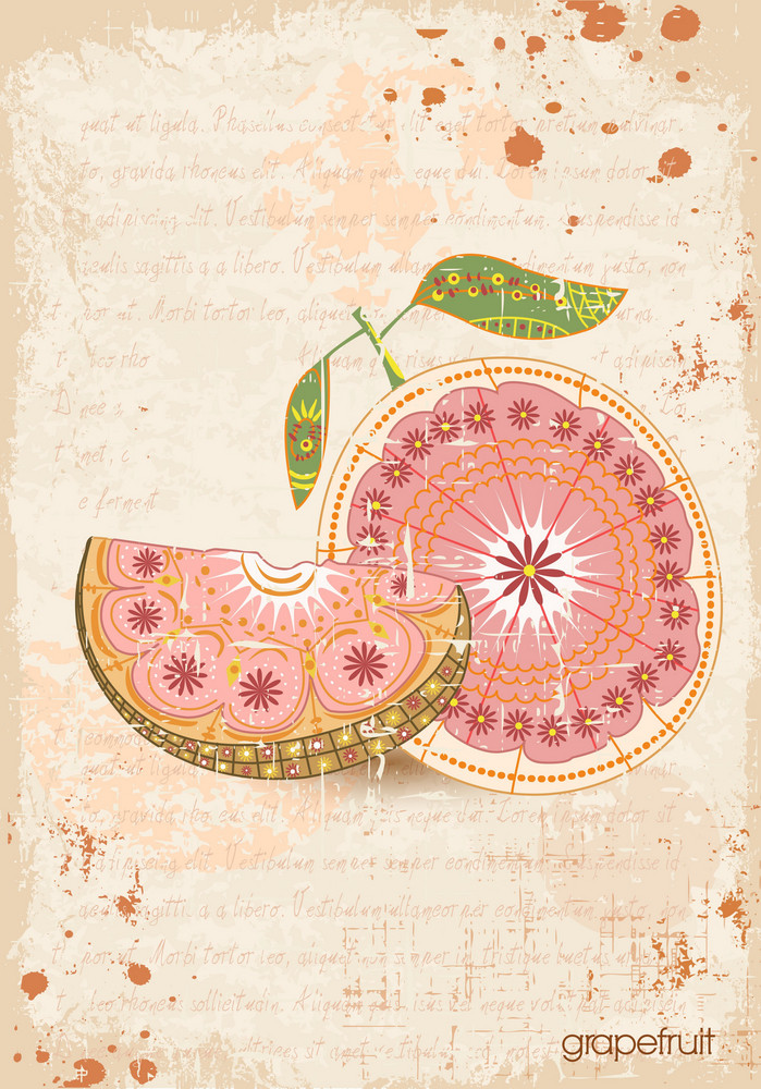 Vector Vintage Background With Cantaloupe Grapefruit
