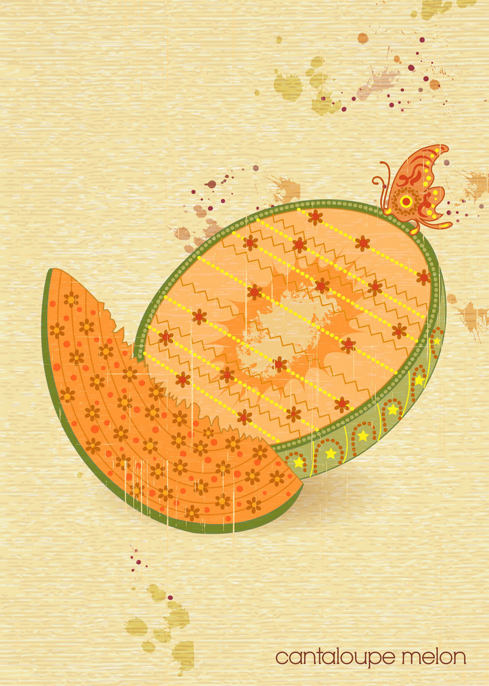 Vector Vintage Background With Cantaloupe Melon