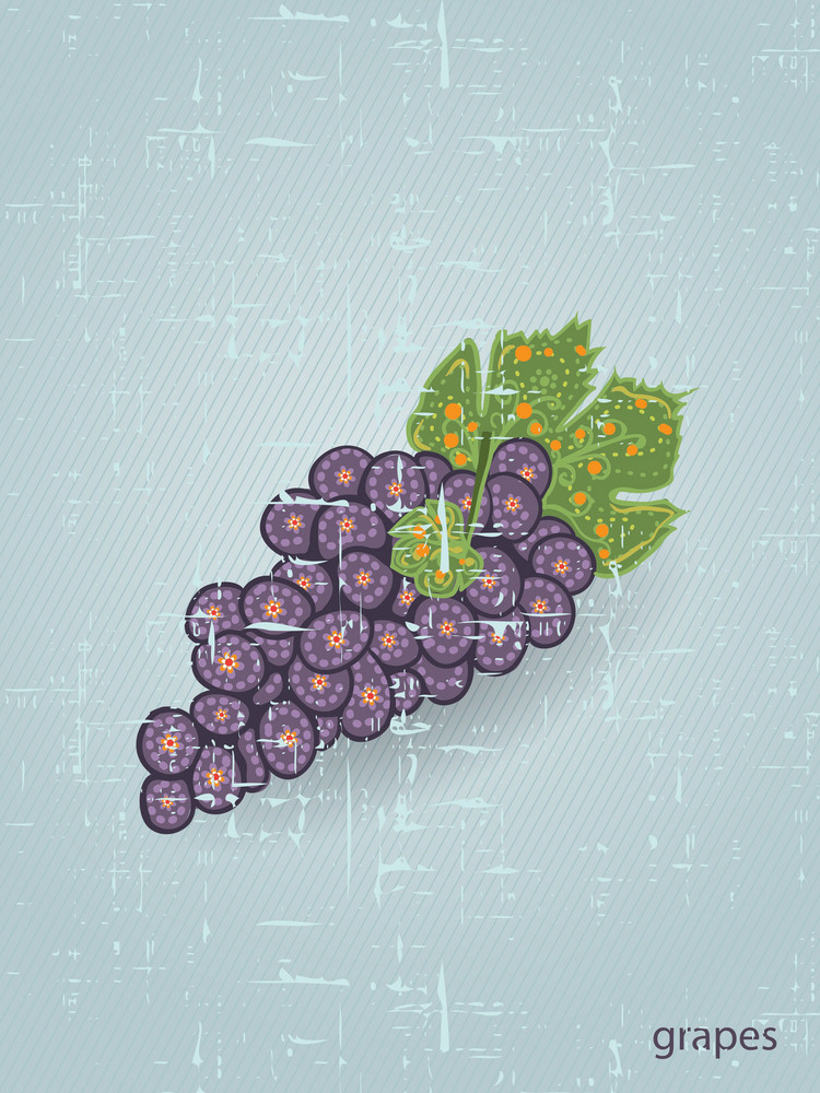 Vector Vintage Background With Grapes