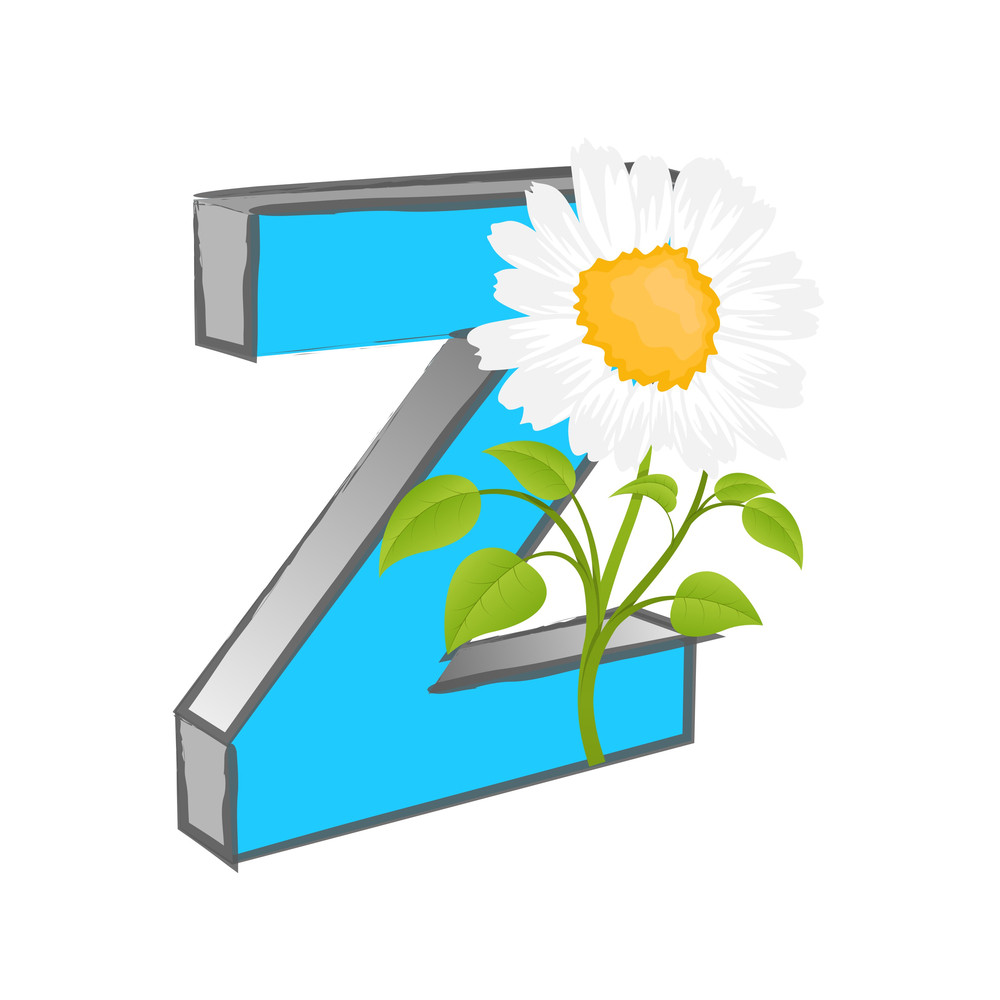 Vector Z Alphabet With Flower
