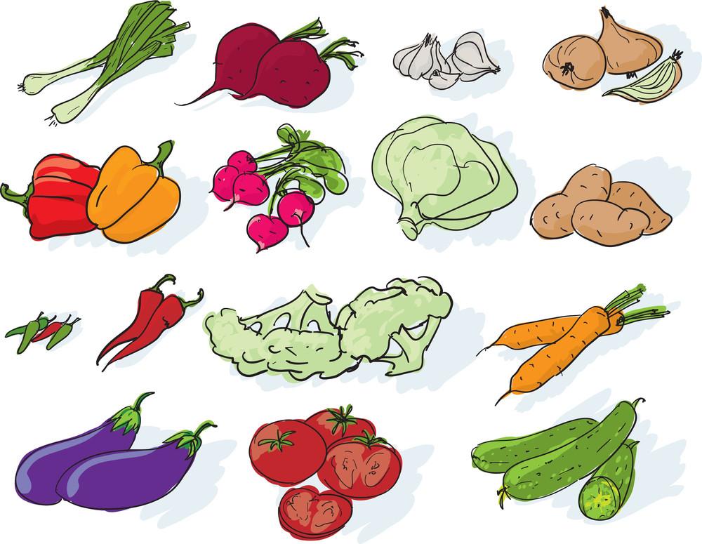 Vegetables. Vector.
