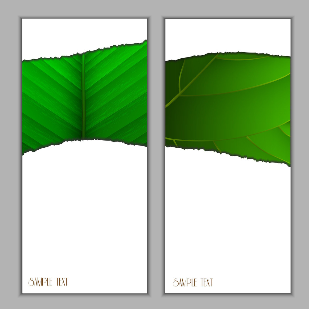 Vertical Seasonal Banners
