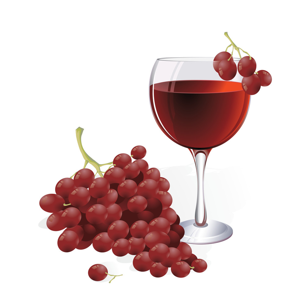 Vine And Grapes. Vector. No Blends Or Gradient Meshes Used.