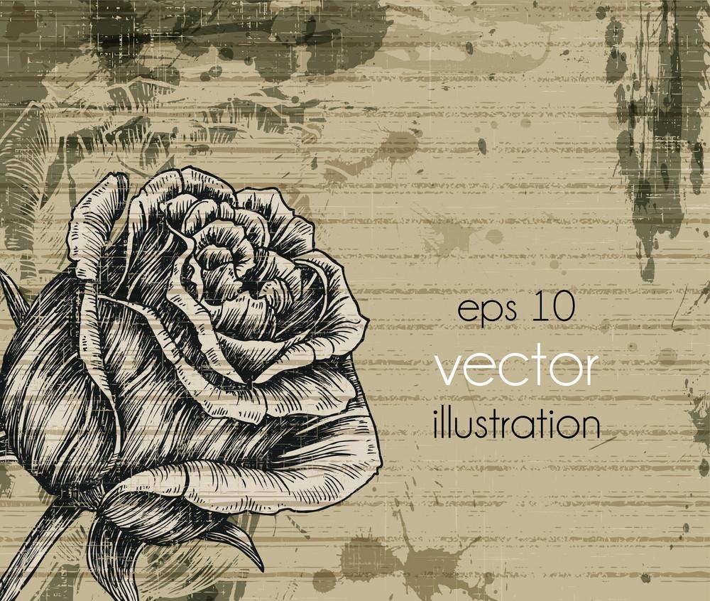 Vintage Background Vector Illustation