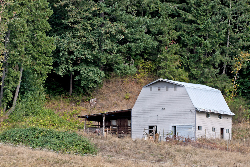 Vintage Country Goat Barn