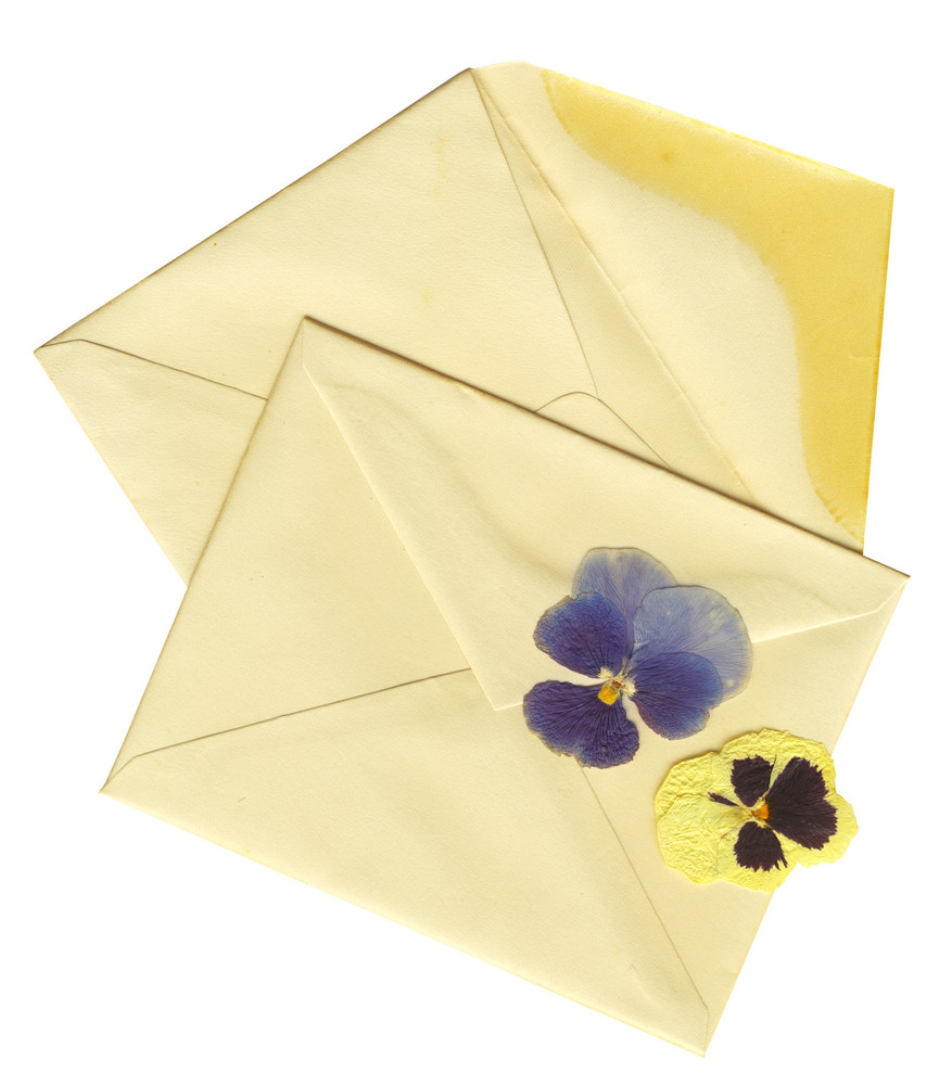 Vintage Envelopes And Dry Flowers With Clipping Path