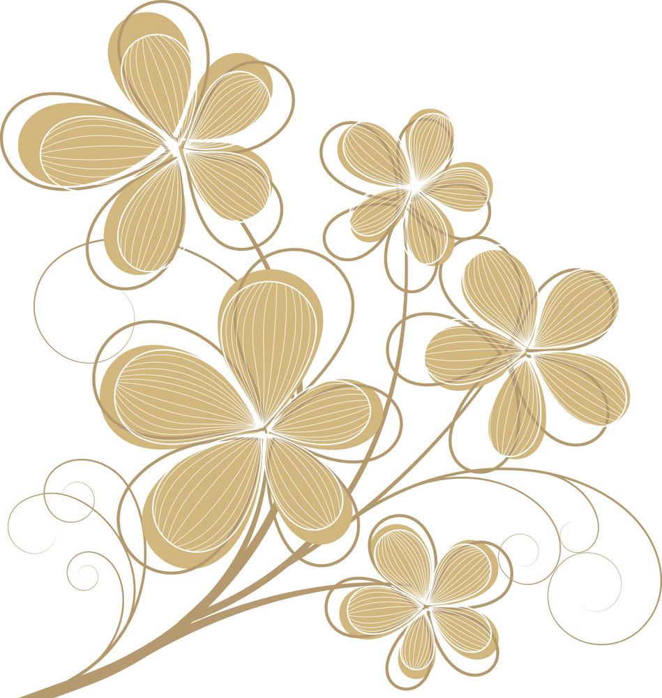 Vintage Floral Designs