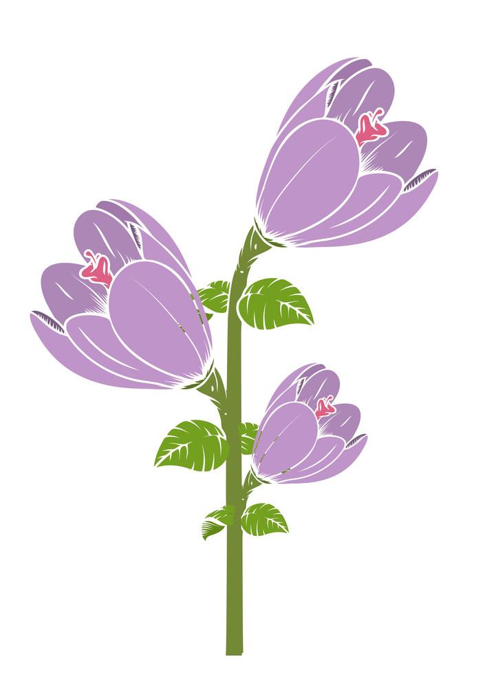 Vintage Tulip Flowers Branch Vector