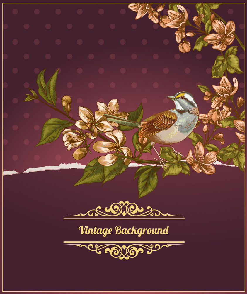 Vintage Vector Illustration With Bird, Spring Flowers