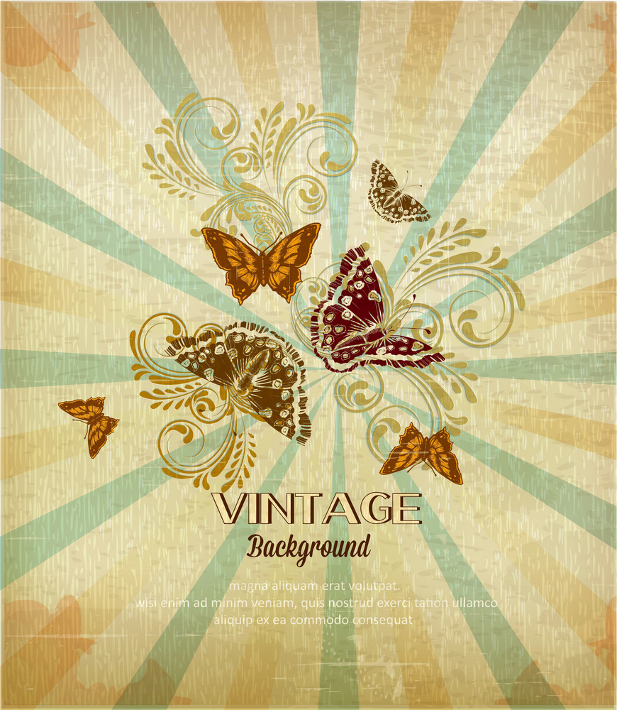 Vintage Vector Illustration With Butterfly, Flowers , Rays