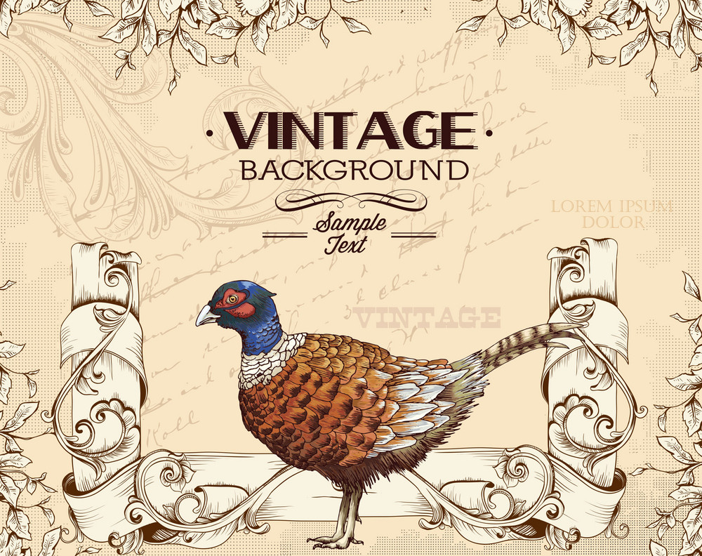 Vintage Vector Illustration With Floral Elements And Bird