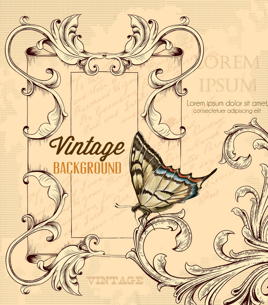 Vintage Vector Illustration With Floral Elements, Butterfly And  Vintage Frame
