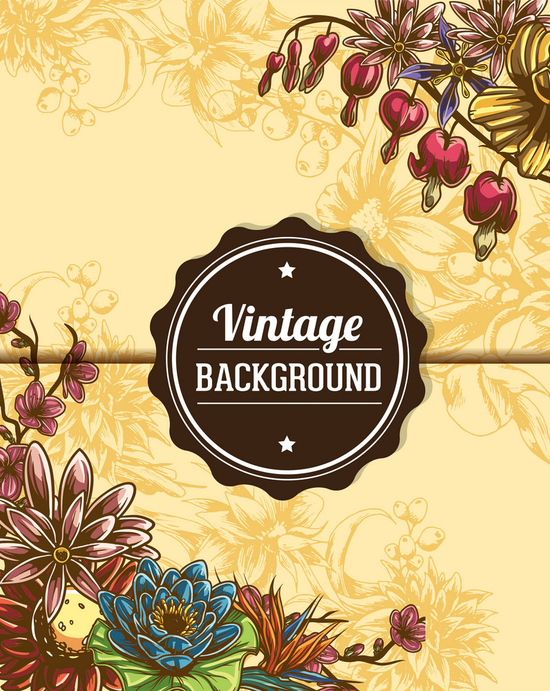 Vintage Vector Illustration With Floral Elements, Photo Frame, Ribbon,