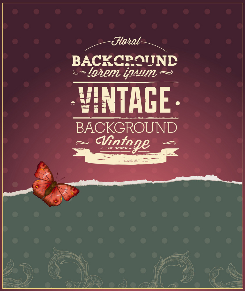 Vintage Vector Illustration With Floral Elements,torn Paper, Butterfly
