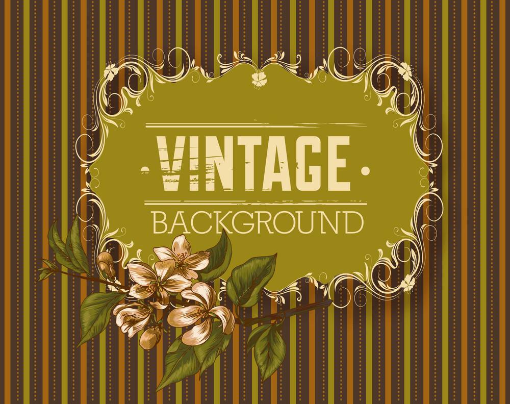 Vintage Vector Illustration With Spring Flowers And Floral Frame