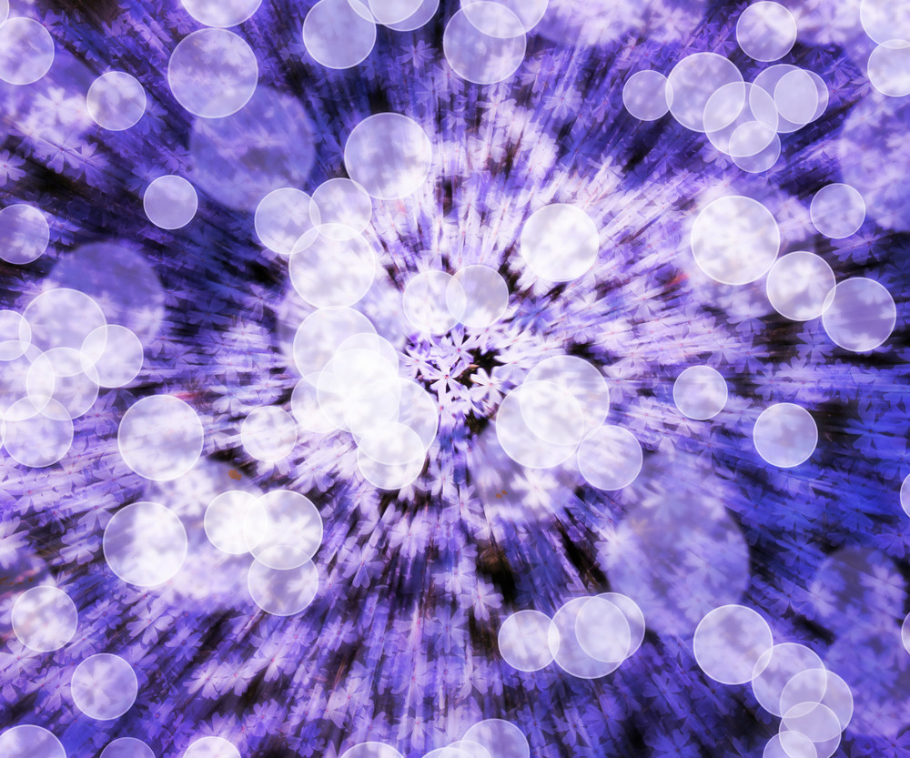 Violet Flower Abstract Background