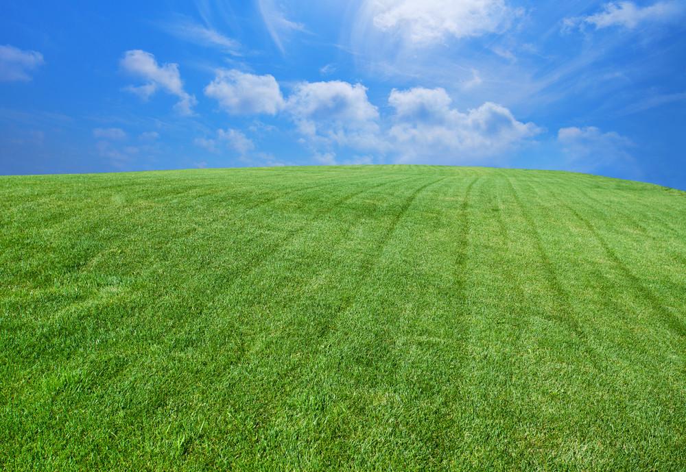 綠色的草坪與藍天