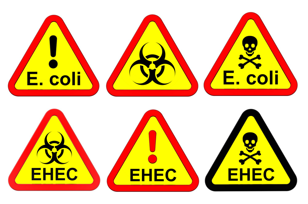 Warning Signs Set Isolated On White