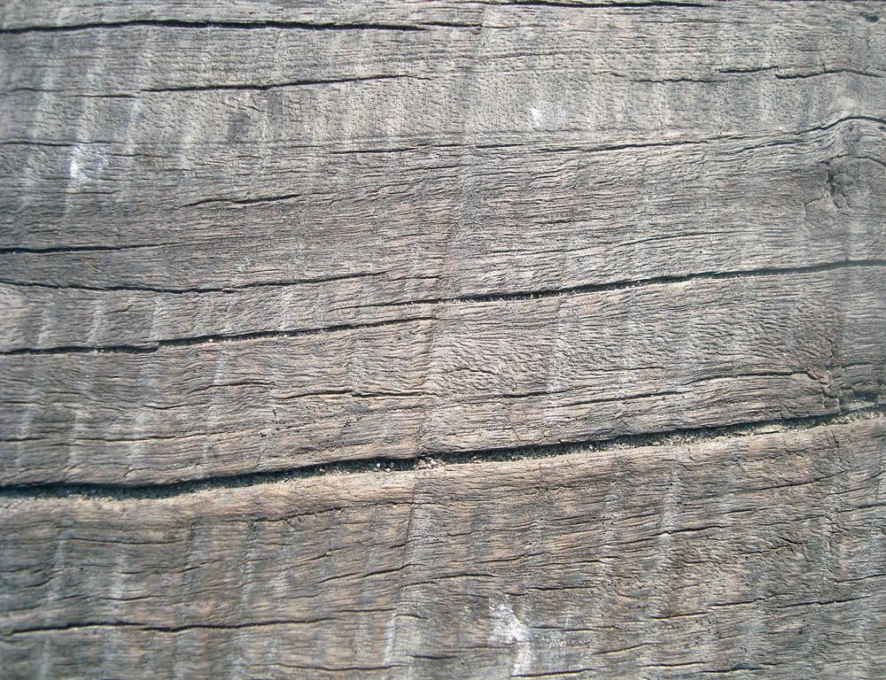 Weathered_bark_wood
