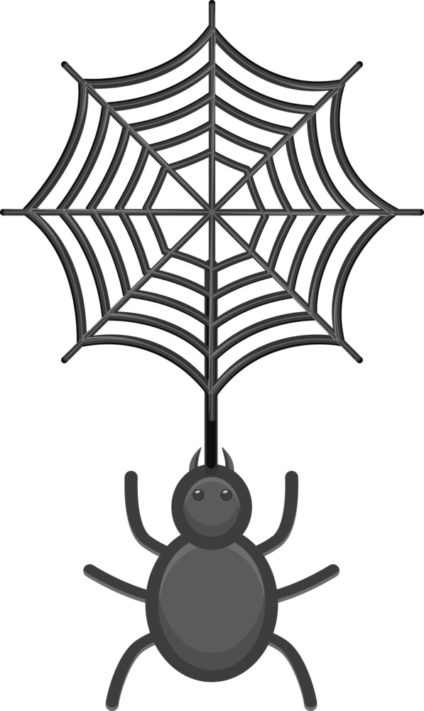 Web And Scpider Vector Illustration