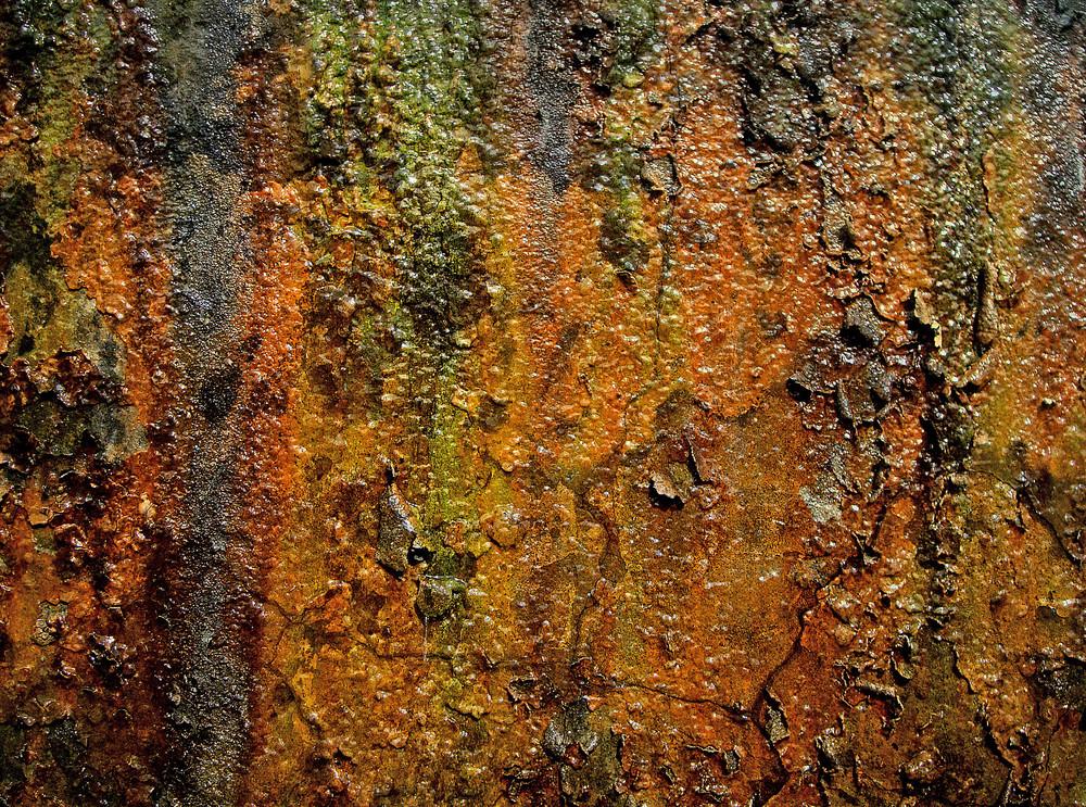 Wet Texture