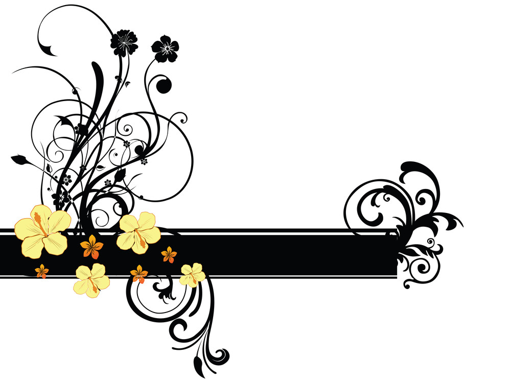 White Background With Floral Pattern