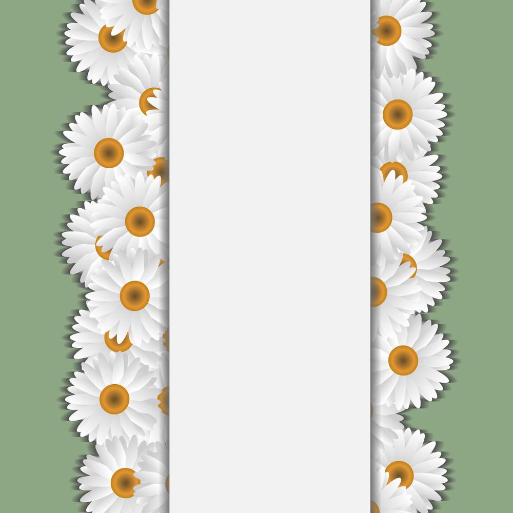 White Camomile Card
