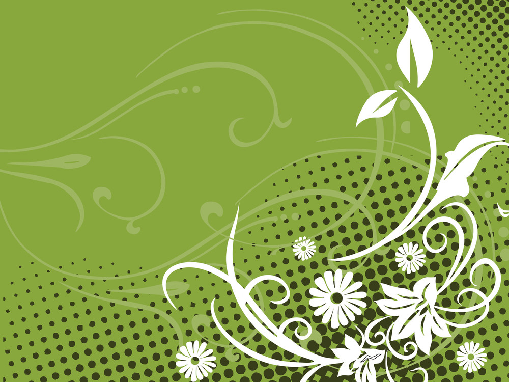 White Flower With Green Background