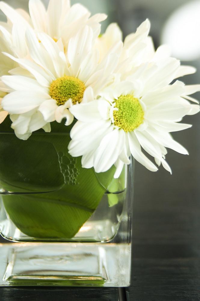 White flowers on little vase