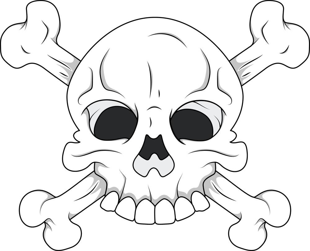 White Skull And Crossbones