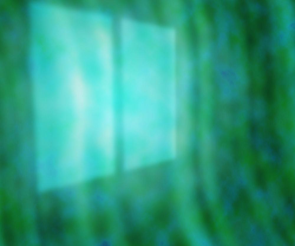 Window Light Photo Backdrop