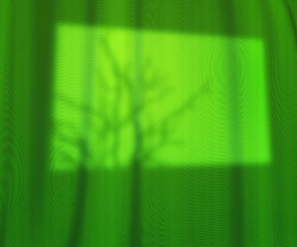 Window Lights Green Studio Backdrop
