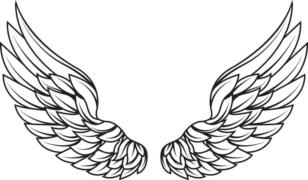 wings vector element royalty free stock image storyblocks