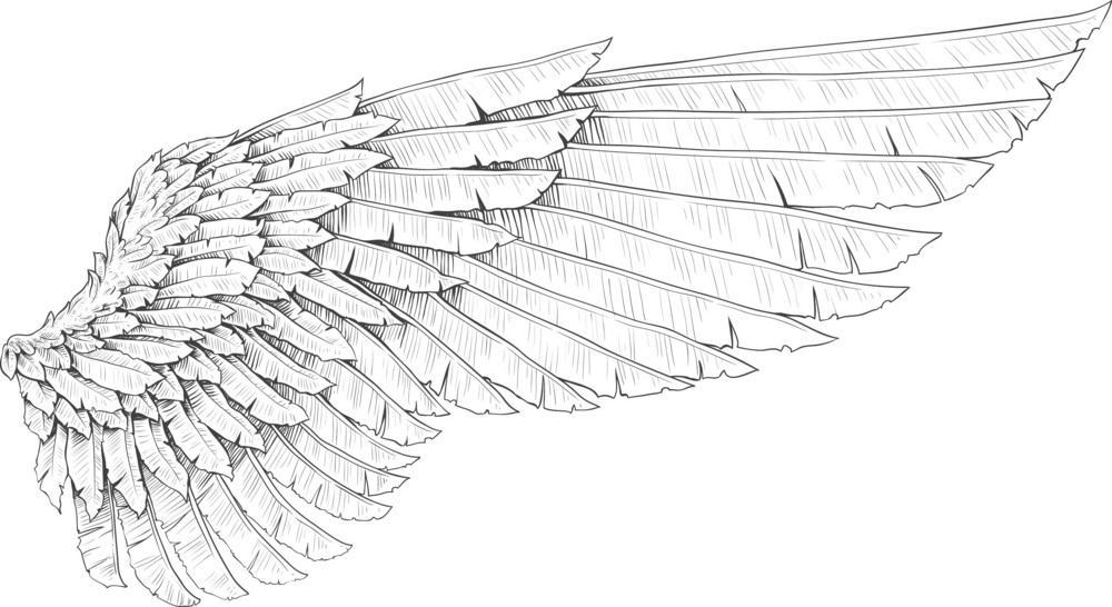 翅膀向量元素