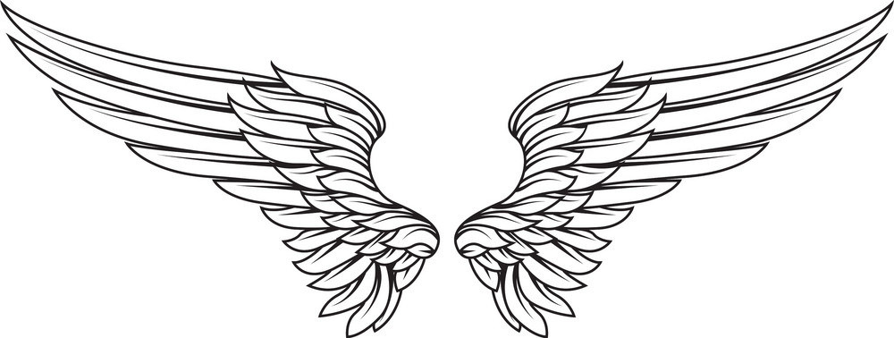 Wings Vector Element Royalty-Free Stock Image ...