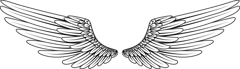 Wings Vector Element