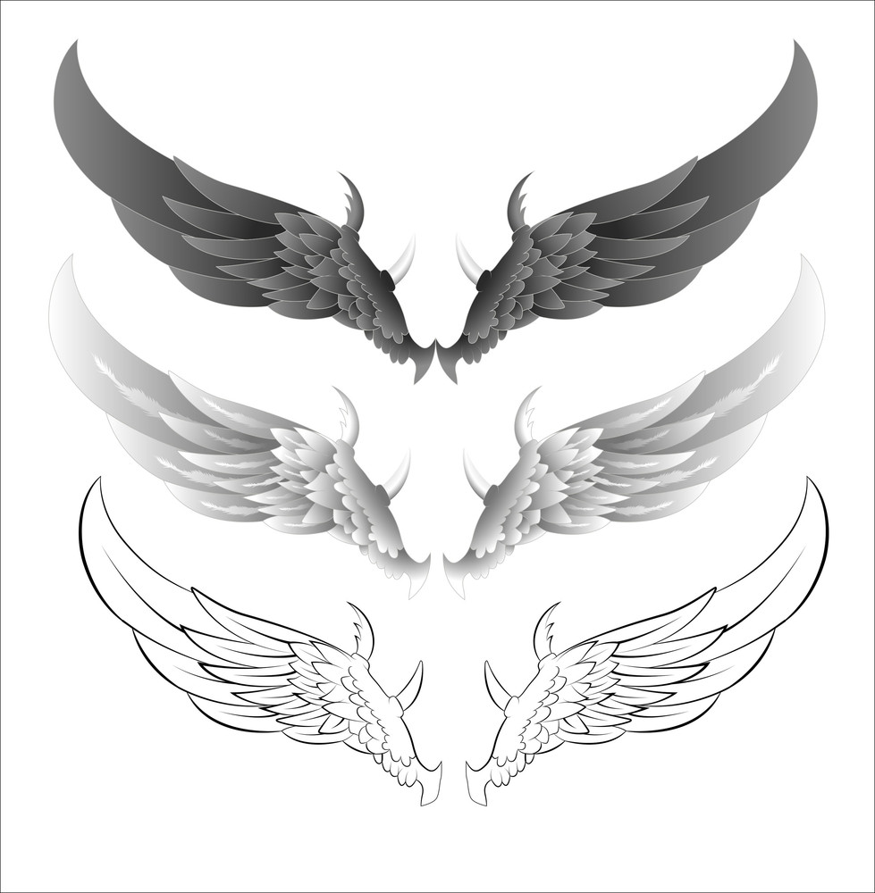 Wings Vector Illustrations