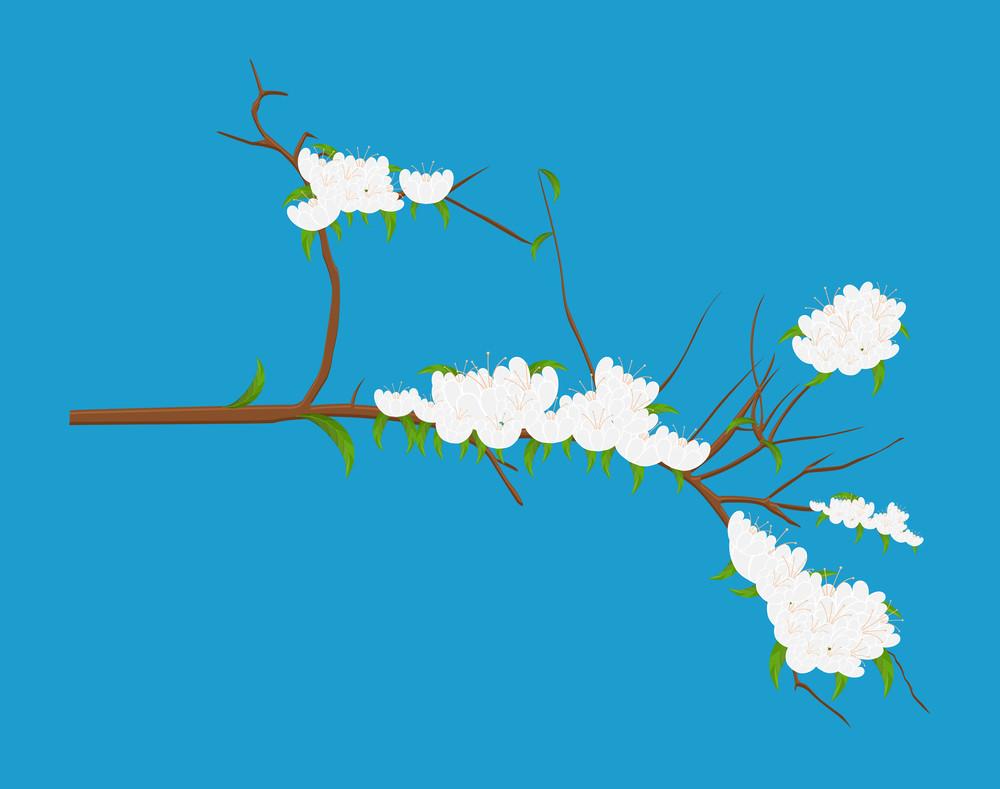 Winter Flowers Stem Vector