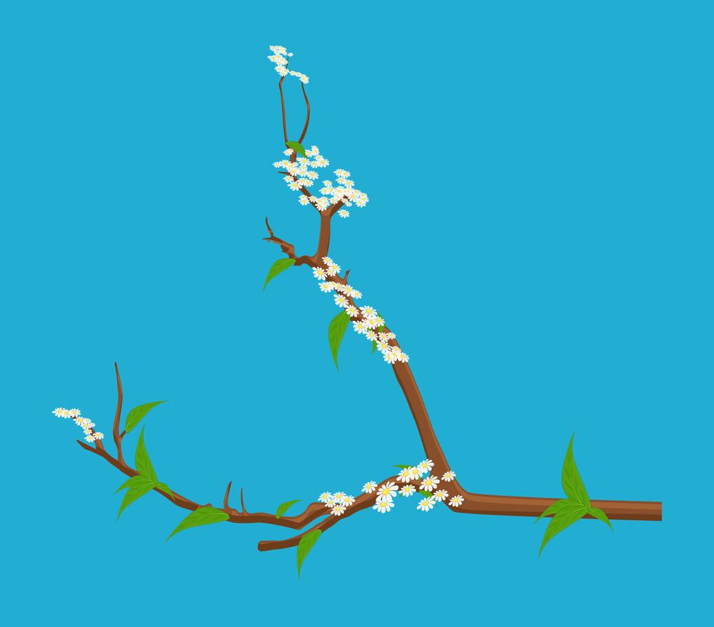 Winter Season Flowers Branch