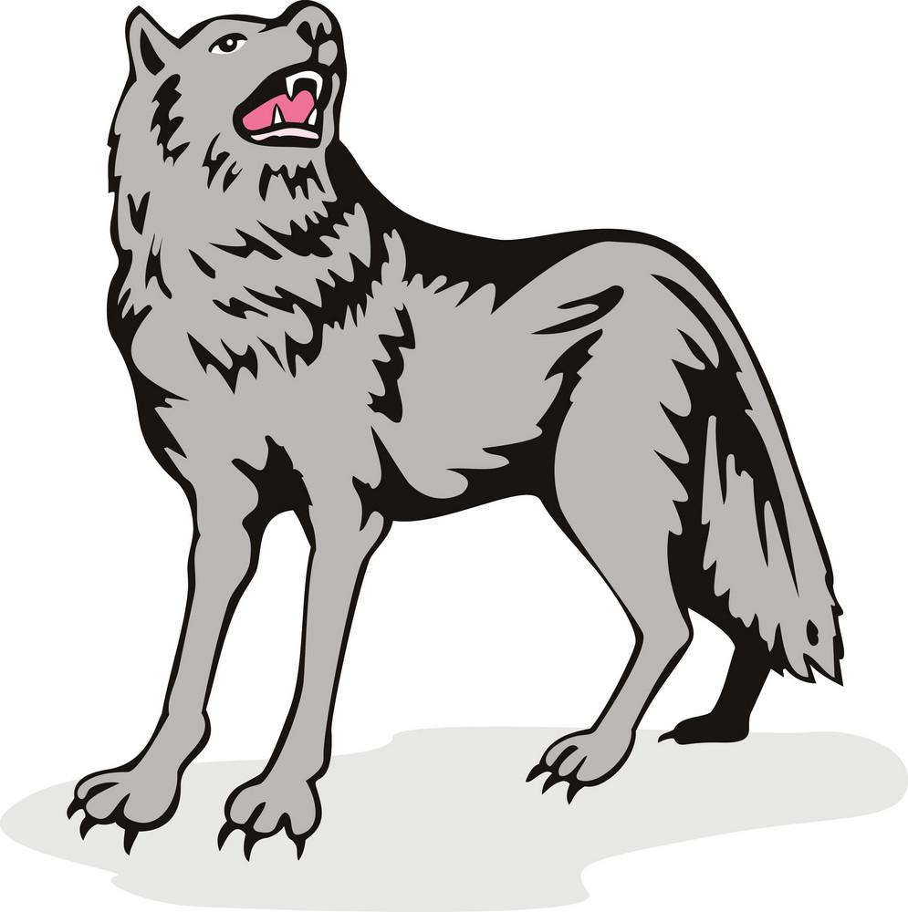 Wolf Wild Dog Howling