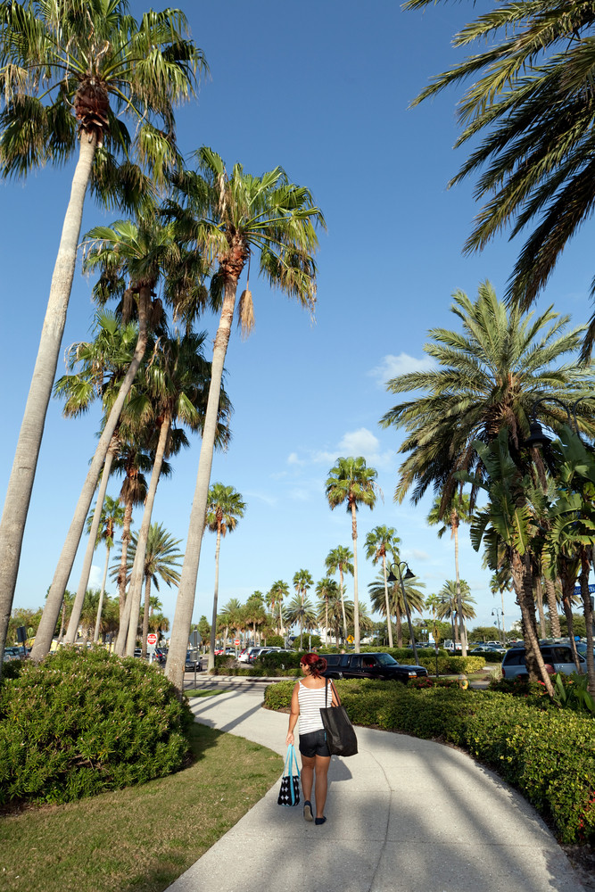 Woman walking on a pathway with Florida palm trees all around.
