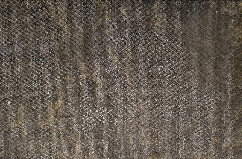 Wood Background 12