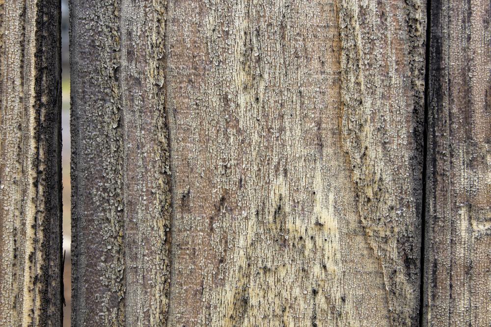 Wood Background 39