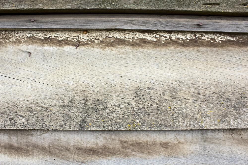 Wood Background 41