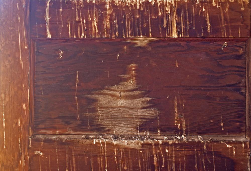 Wood Background 7