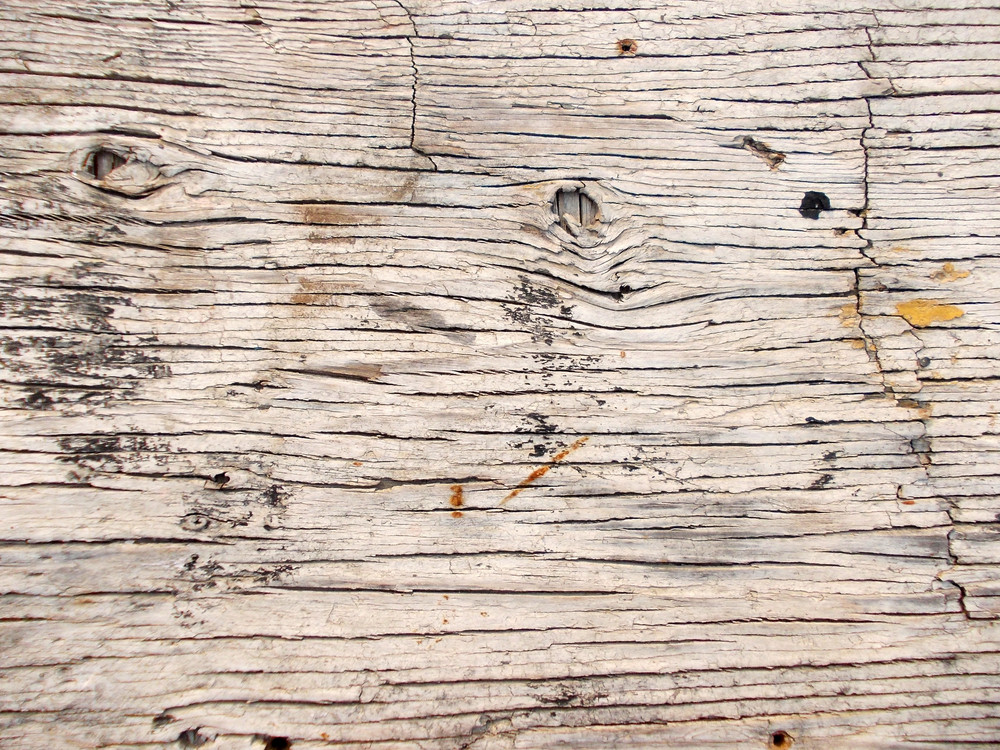 Wood Background Texture 56